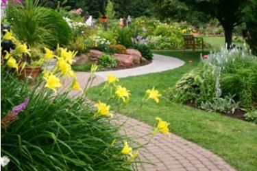 Epsom Salt - Garden & Horticulture